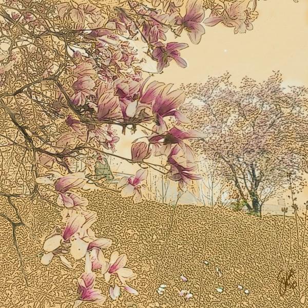 PInk Magnolia Tree Digital Download