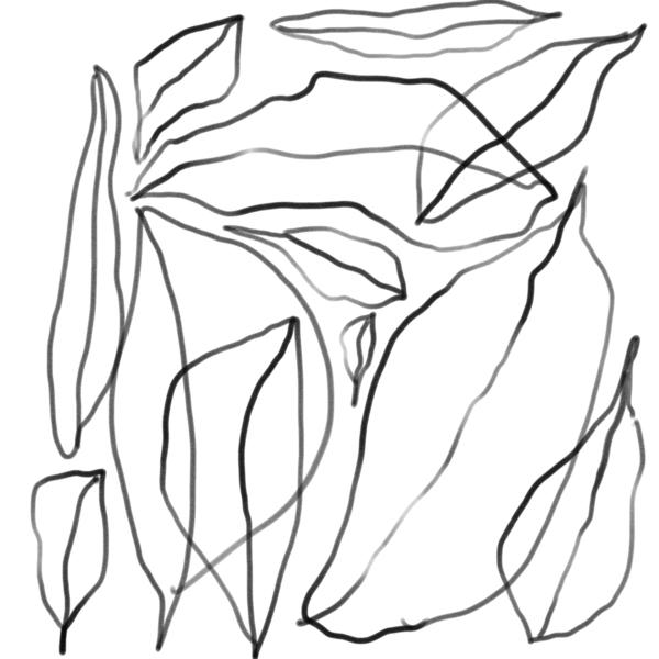 Leaves Digital Download