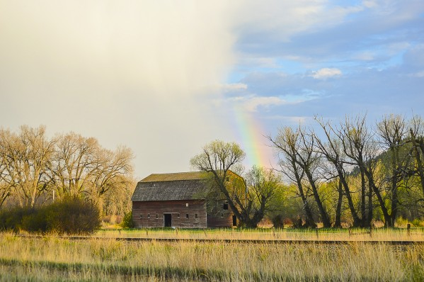 Springtime by Scene Again Images: Photography by Cliff Davis