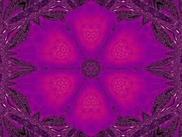 Purple Desert Song 25 by Sherrie Larch