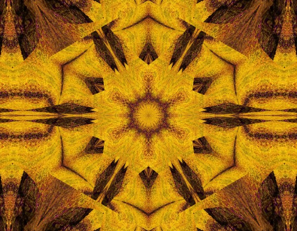Spiritual Sunshine  27 by Sherrie Larch