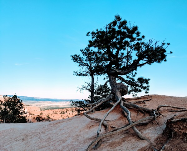 Bryce Canyon IV by Broken Compass Life Photography