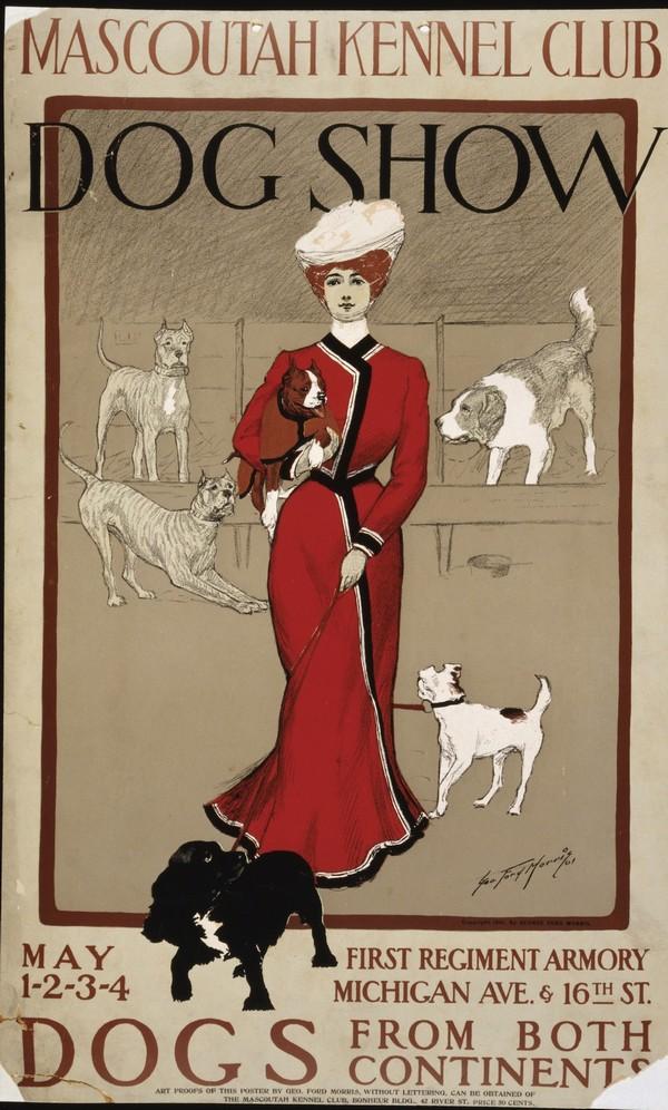 Dog Show  Print