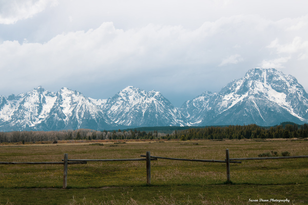 Grand Teton Ranch Life by Susan Diann Photography