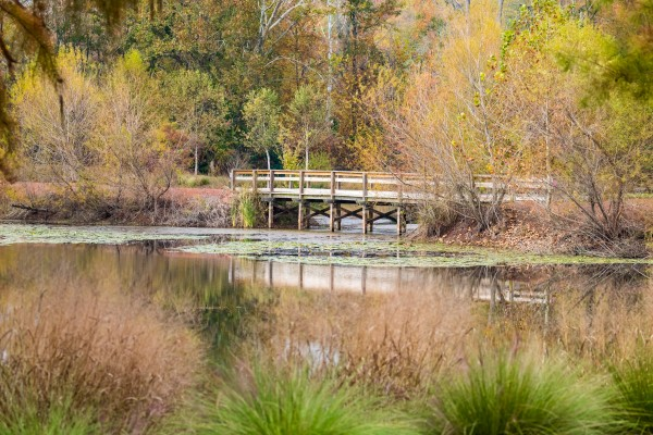 Brick Pond Park   North Augusta 0796 by @ThePhotourist