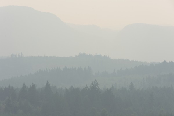 Hills of haze by Violet Carroll