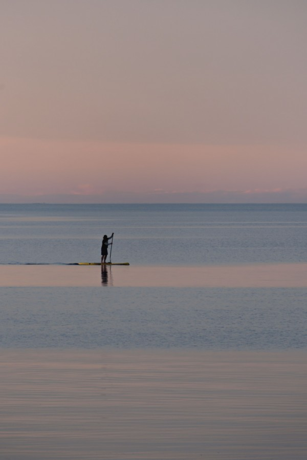 Evening paddleboarder by Violet Carroll