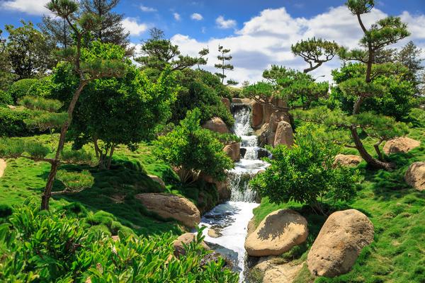Garden Waterfall Digital Download