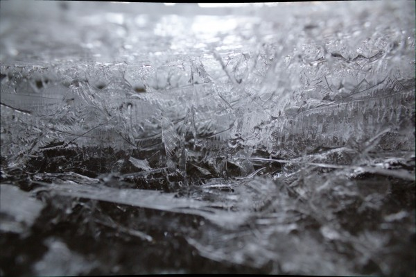 Ice by Wade Anderson