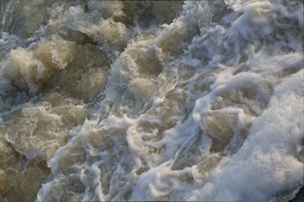 Rapids by Wade Anderson