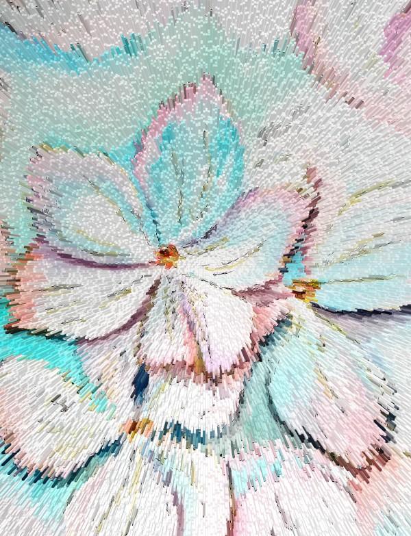 Blossom Flowers by Yuliya Marusina