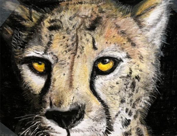 cheetah by anartlova