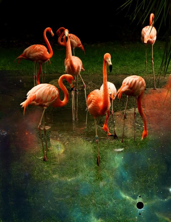 green flamingos by anartlova