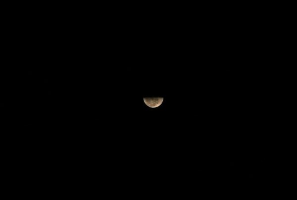 Luna by anartlova