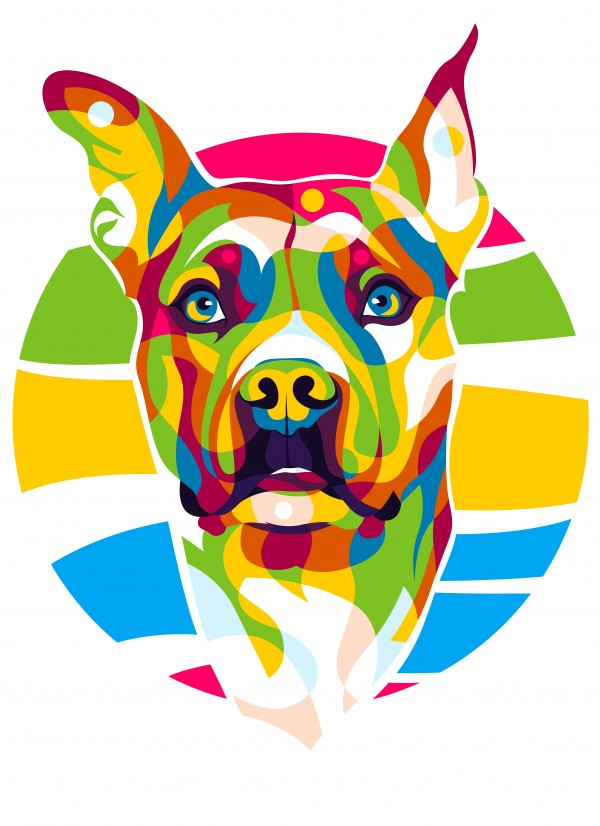 Colorful Pitbull Retriever Dog by wpaprint