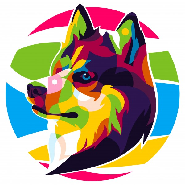 The Colorful Siberian Husky Dog by wpaprint