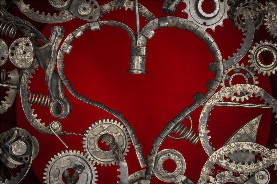 Mechanical Love  Print