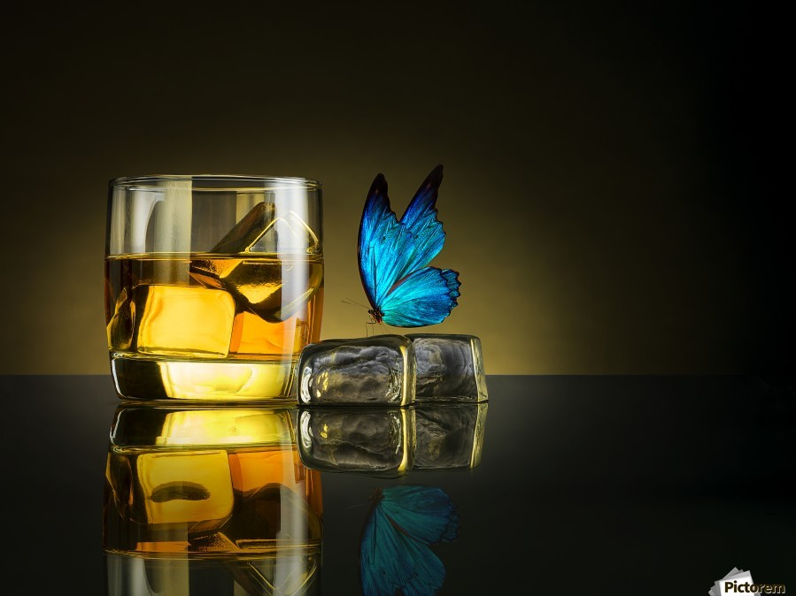 Butterfly Drink  Print