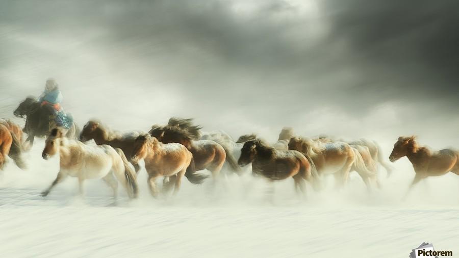 Horses gallop  Print