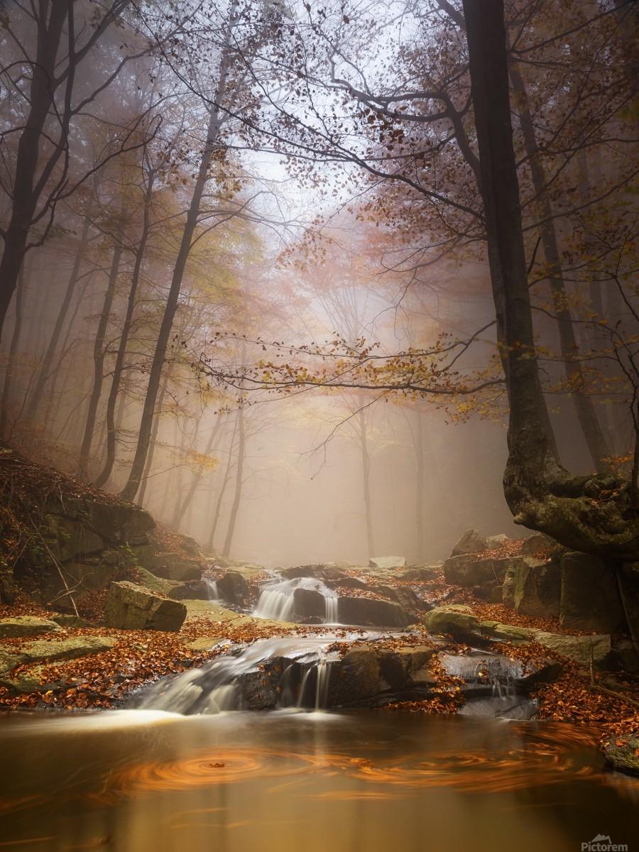 Mistyc mist  Print