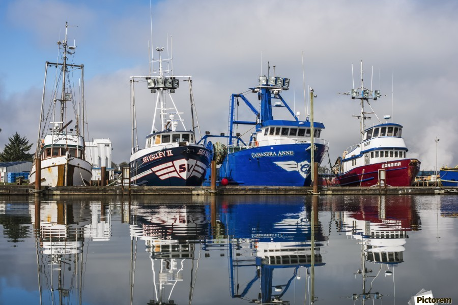 Fishing boats moored at the dock; Warrenton, Oregon, United States of America  Print