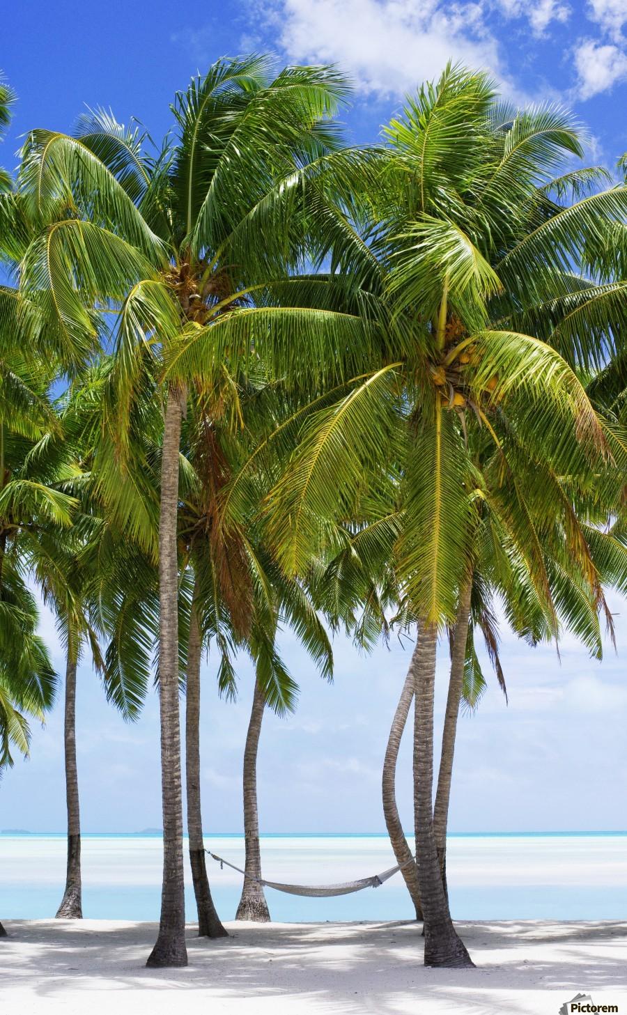 Aitutaki Lagoon Resort, Aitutaki, Cook Islands  Print