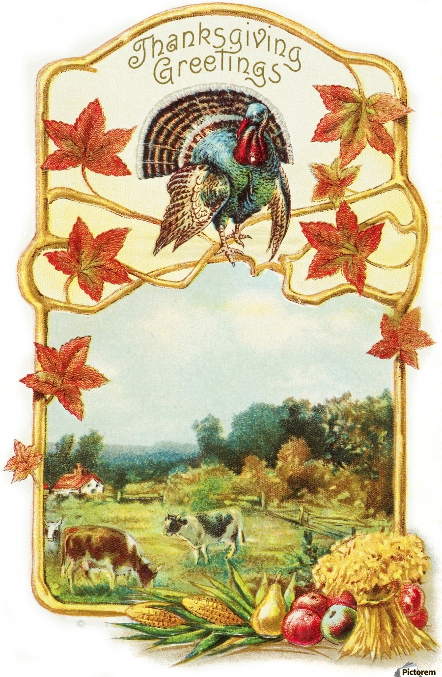 Vintage Thanksgiving Greeting Card With Illustration Of Turkey And