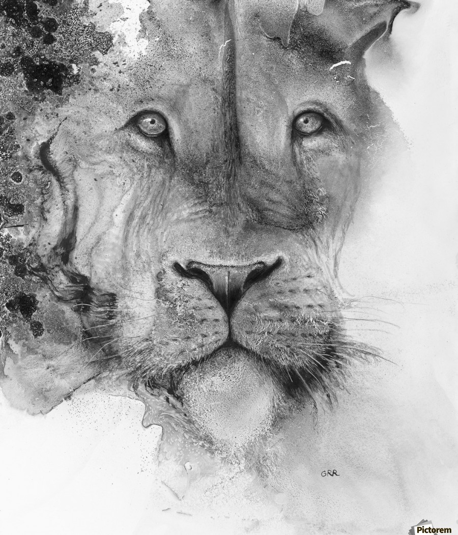 Illustration of a lion's face and a mottled background  Print