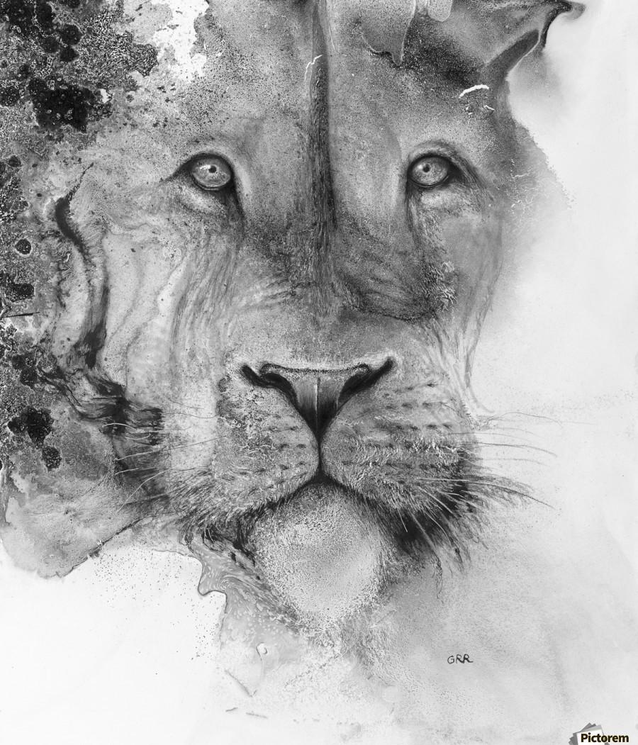 Illustration of a lion's face and a mottled background  Imprimer