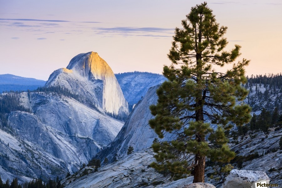 Half Dome seen from Olmsted Point, Yosemite National Park; California, United States of America  Print