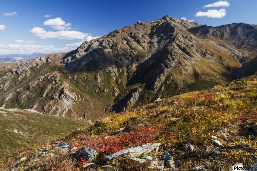 Landscape in the rocky high country of Denali National Park and Preserve, interior Alaska; Alaska, United States of America  Print