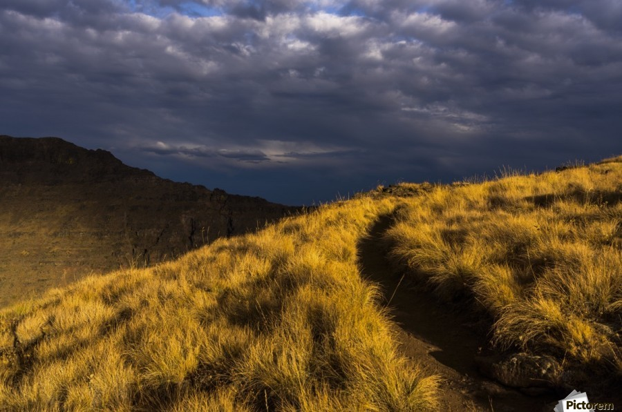 Evening sun highlights Kiger Gorge at Steens Mountain; Frenchglen, Oregon, United States of America  Print