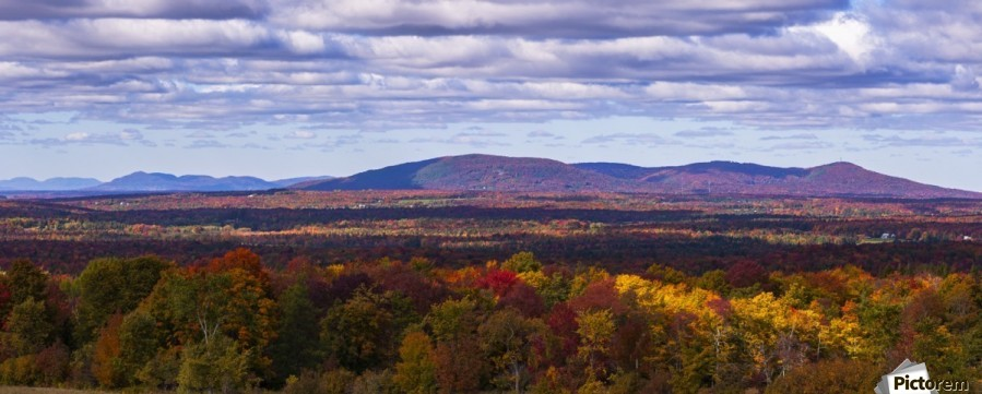 Mountain range in autumn colours with autumn coloured forest in the foreground; West Bolton, Quebec, Canada  Print