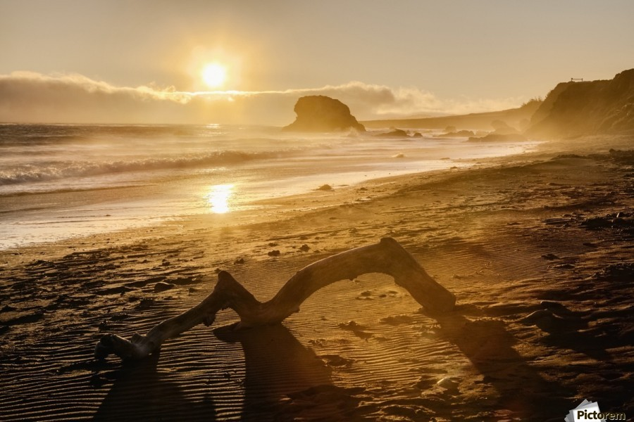 Seashore at sunset, San Simeon State Park; California, United States of America  Print