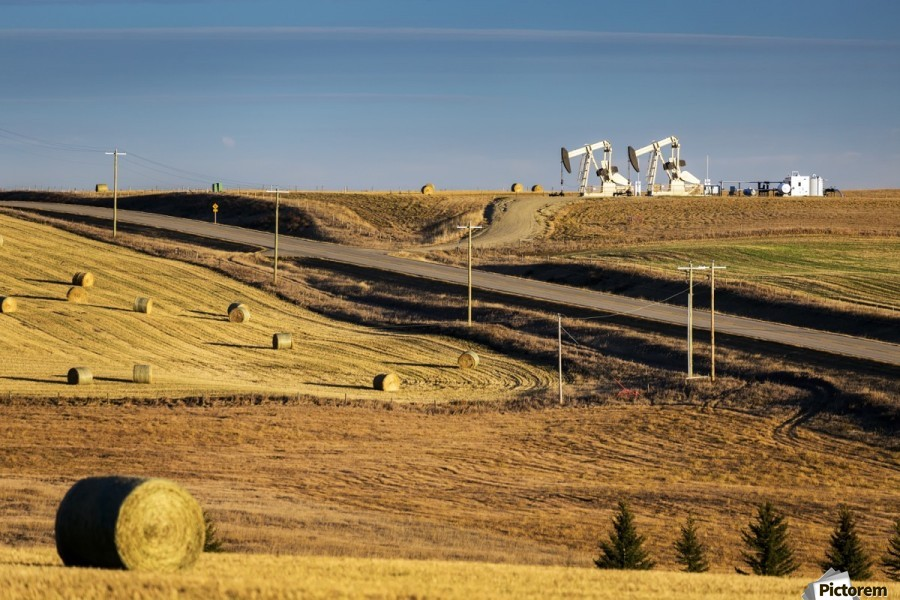 Two pump jacks on rolling hills in the distance along highway with cut fields and hay bales; Alberta, Canada  Print