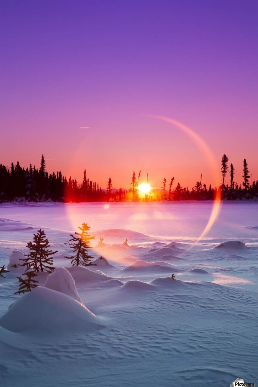Sun flare glowing over a winter landscape; Trapper Creek, Alaska, United States of America  Print