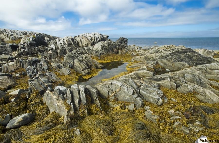 Shoreline along the Bay of Fundy, near Pubnico; Nova Scotia, Canada  Print