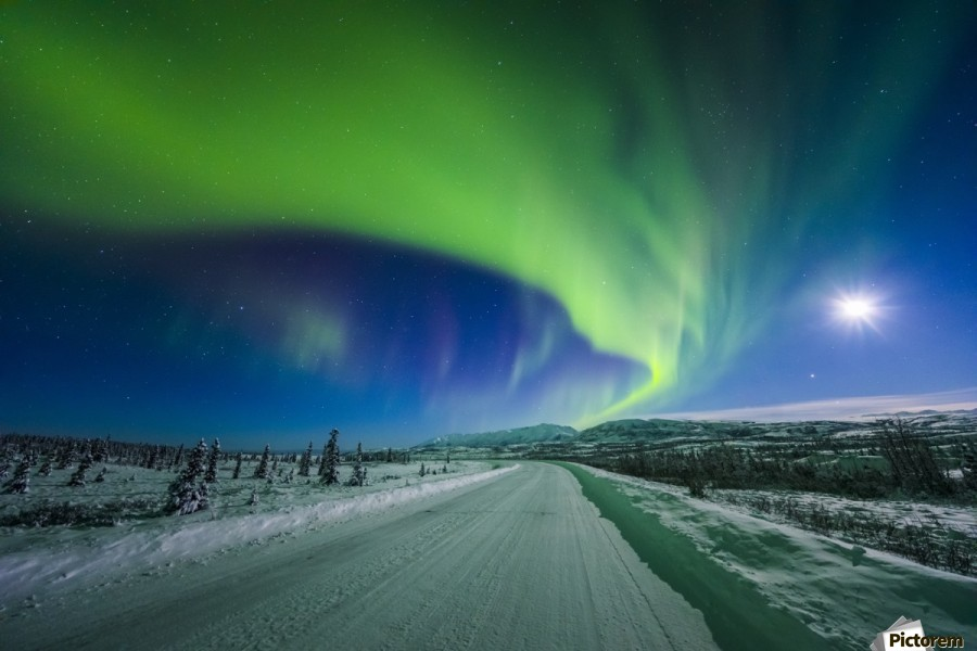 The moon and aurora shine in the night sky over a snow covered Richardson Highway south of Delta Junction; Alaska, United States of America  Print