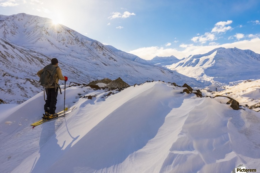 A backcountry skier looks over the Black Rapids Glacier valley from a high point on the terminal moraine in winter; Alaska, United States of America  Print
