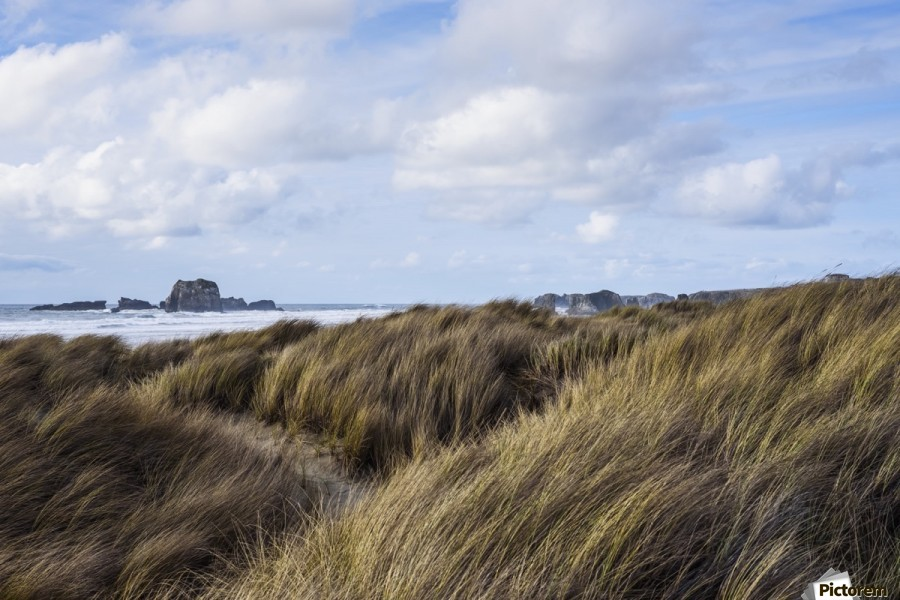 Grass and clouds frame a scene along the coast; Bandon, Oregon, United States of America  Print