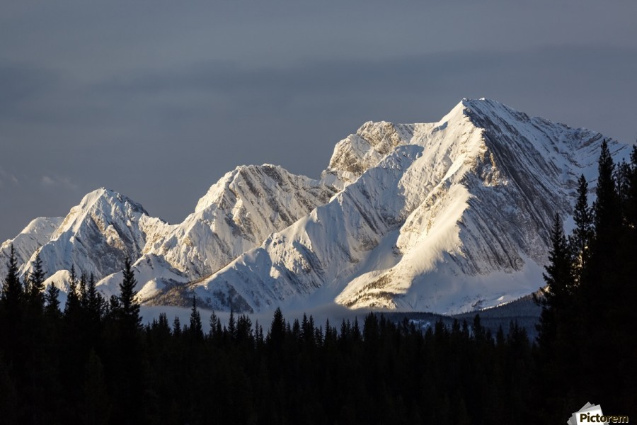 Snow covered mountains with early morning light, silhouetted forest in the foreground, blue sky and clouds; Kananaskis Country, Alberta, Canada  Print