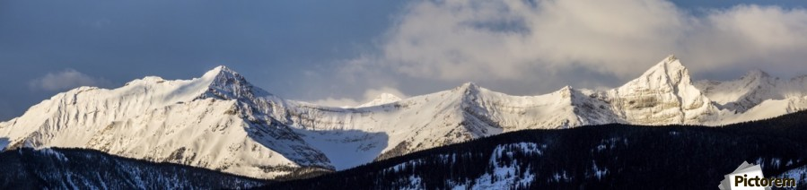 Panorama of snow covered mountains with early morning light, silhouetted forest in the foreground, blue sky and clouds; Kananaskis Country, Alberta, Canada  Print