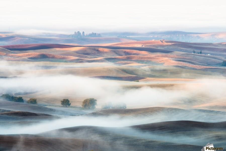 Misty Morning  Print