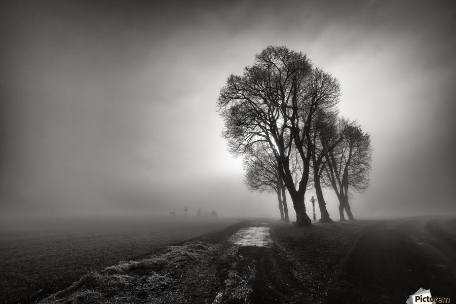 Fog  Print