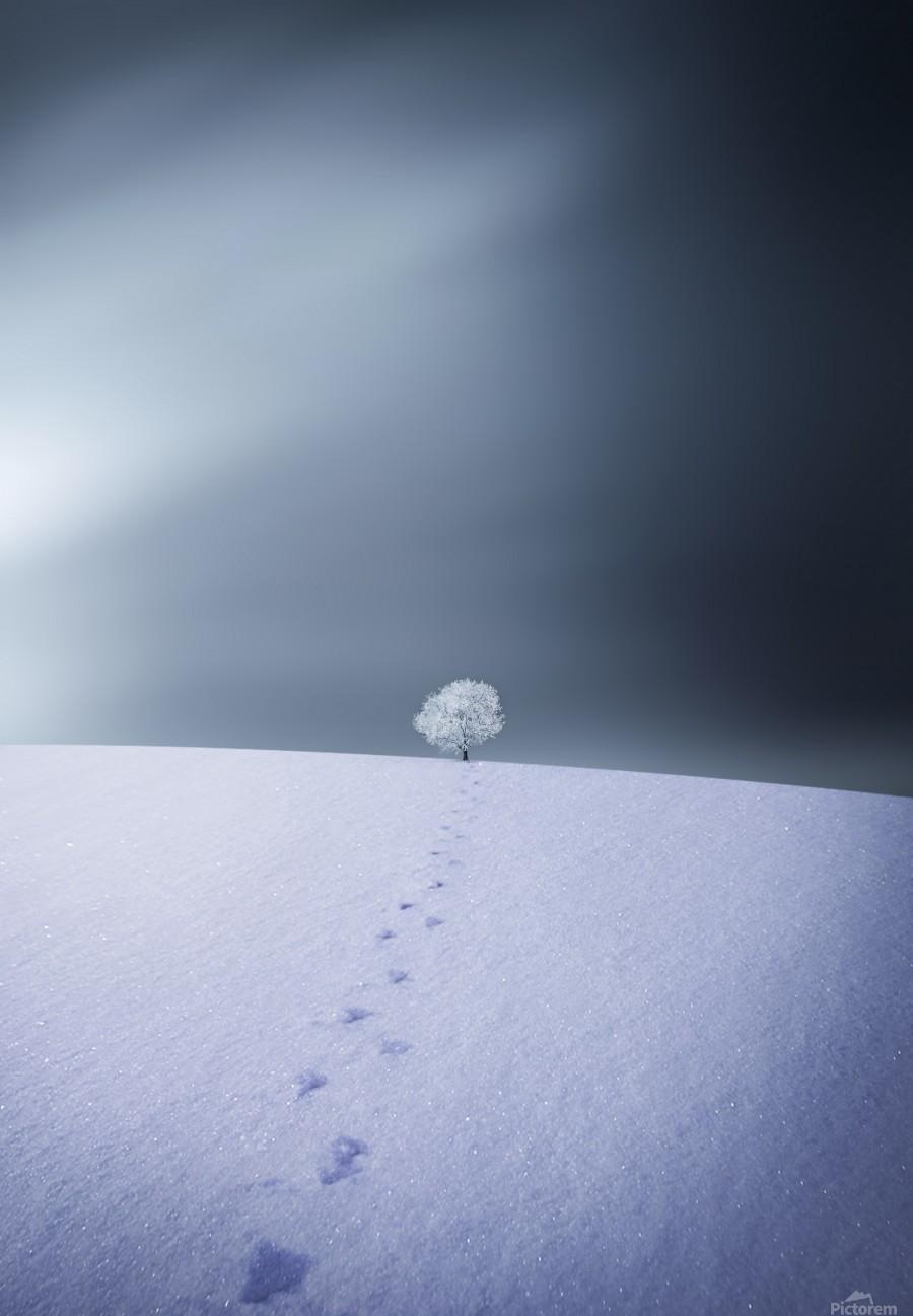 Winter  Print