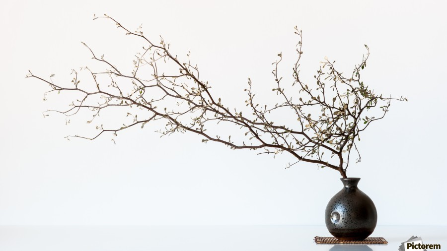 Vase And Branch  Print