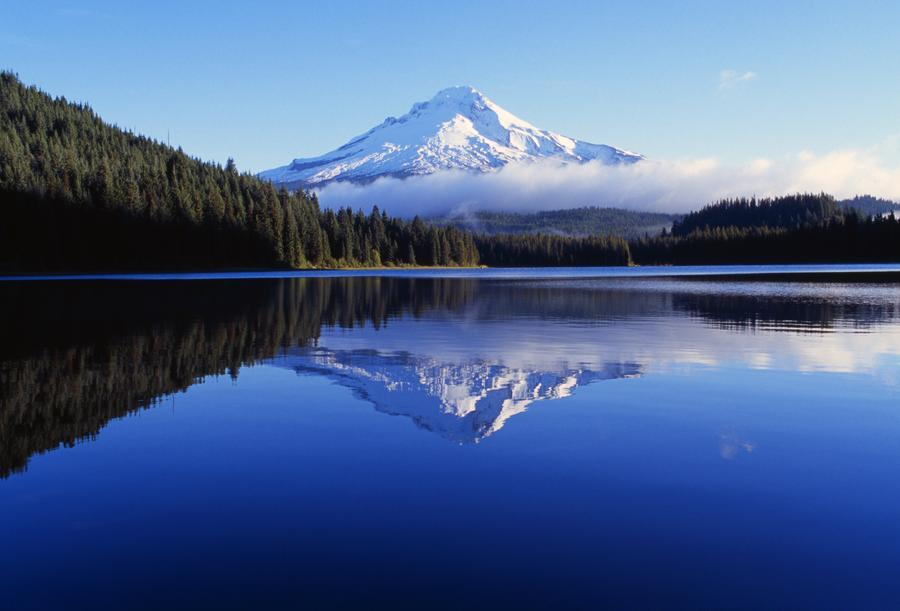 Trillium Lake With Reflection Of Mount Hood, Mount Hood National Forest  Print