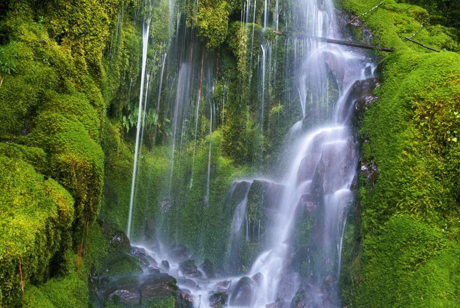 Waterfall Over Moss-Covered Rocks  Print