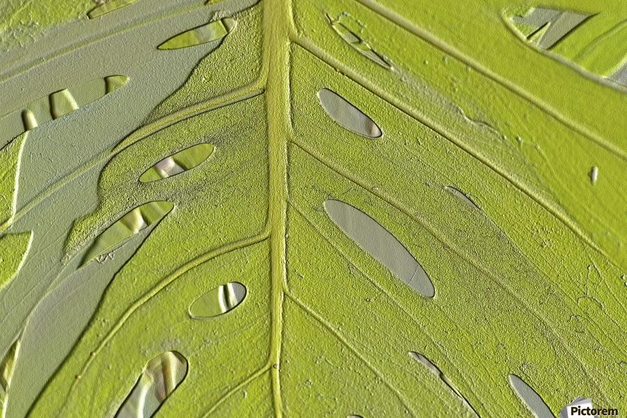 Leaf Texture Background  Print