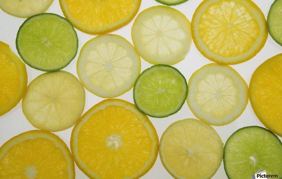 Citrus Slices  Print
